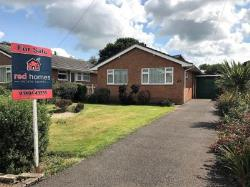 Detached Bungalow For Sale  Feniton Devon EX14