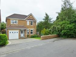 Detached House For Sale Dinninigton Sheffield South Yorkshire S25
