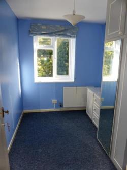Room To Let  Roehampton Greater London SW15