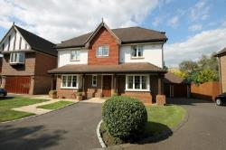 Detached House To Let  Surrey Surrey KT8