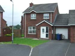 Semi Detached House To Let  Craigavon Down BT65