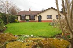 Detached Bungalow For Sale  Wrexham Wrexham LL11