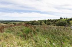Land For Sale  Bathgate West Lothian EH48