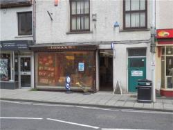 Commercial - Other For Sale  Ceredigion Ceredigion SA48