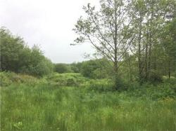 Land For Sale  Llanon Ceredigion SY23