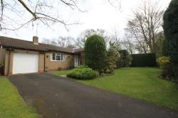 Detached Bungalow To Let  Newcastle Upon Tyne Northumberland NE20