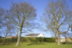 Detached Bungalow For Sale  Kirkcaldy Fife KY1
