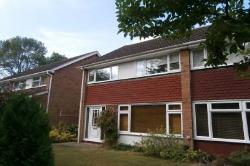 Semi Detached House To Let  Stevenage Hertfordshire SG2