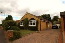 Detached Bungalow To Let Long Newton Stockton-On-Tees Durham TS21