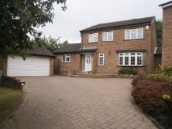 Detached House To Let Oadby Leicester Leicestershire LE2