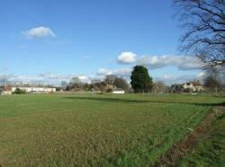 Land For Sale  Moggerhanger Bedfordshire MK44