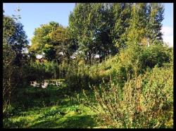 Land For Sale  SOUTH CAVE East Riding of Yorkshire HU15