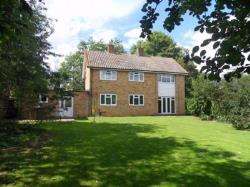 Detached House To Let  CHELMSFORD Essex CM2
