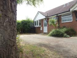 Semi - Detached Bungalow To Let  Oakley Hampshire RG23