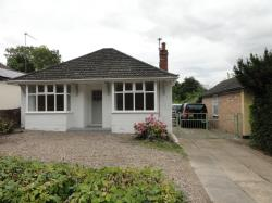 Detached Bungalow To Let  Fornham St Martin Suffolk IP31