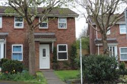 Semi Detached House To Let  Stafford Staffordshire ST16