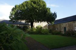 Terraced House To Let  Truro Cornwall TR1
