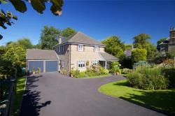 Detached House For Sale  Cattistock Dorset DT2
