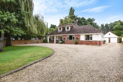 Other For Sale St Leonards Ringwood Hampshire BH24