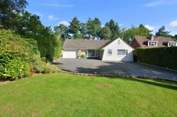 Detached Bungalow For Sale New Road Ferndown Dorset BH22