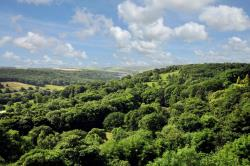 Land For Sale South Crosland Huddersfield West Yorkshire HD4