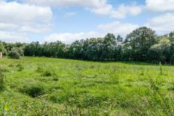 Land For Sale  Ammanford Carmarthenshire SA18