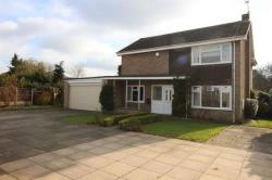 Detached House For Sale Hall Hills Diss Norfolk IP22