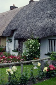 Property News - Rural housing shortage