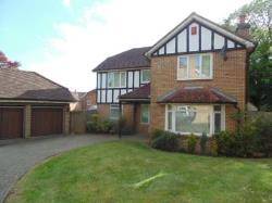 Room To Let Coulsdon Coulsdon Surrey CR5