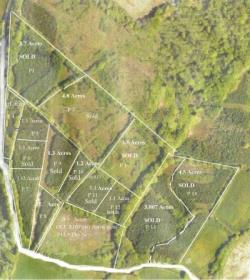 Land For Sale  beaworthy Devon EX21